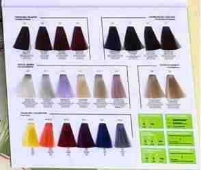 010Plus -10 minute hair colour chart - the fashion shades